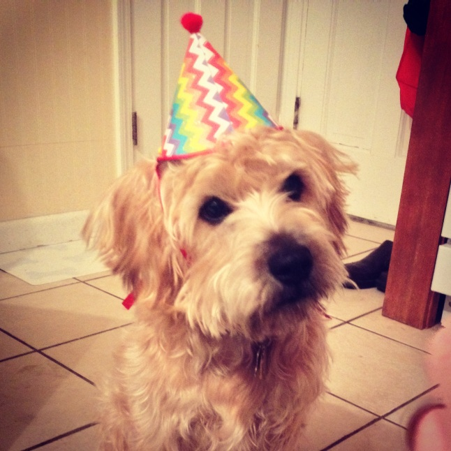 indy birthday hat
